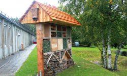 Insektenhotel Burg Reuland