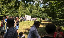 Dorftourismus 2017 Aktion Holzrückerpferde