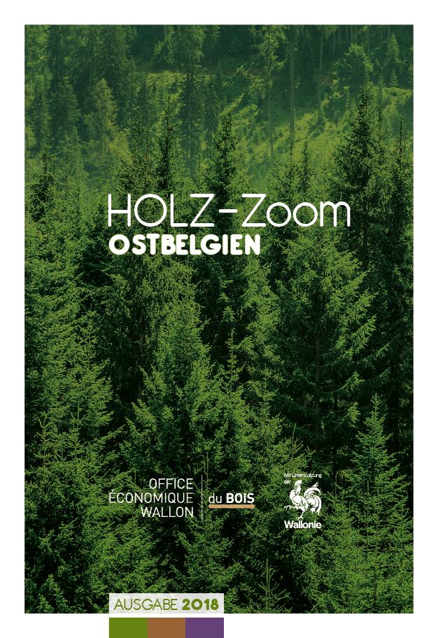 OEWB-17-18676-Brochure Holz-Zoom-cover
